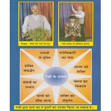 rekee chikitsa bhaarat kee ek praacheen gupt vidya by nandlal dashura in hindi(रेकी चिकित्सा भारत की एक प्राचीन गुप्त विद्या)